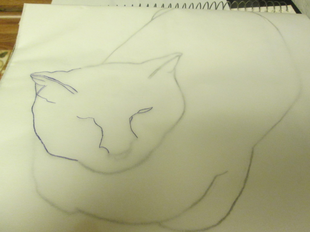 Using a violet colored pencil to trace over cat drawing.
